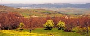siente-naturaleza-paisajes-piedrahita